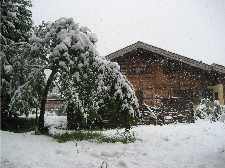 May Snow in Cham