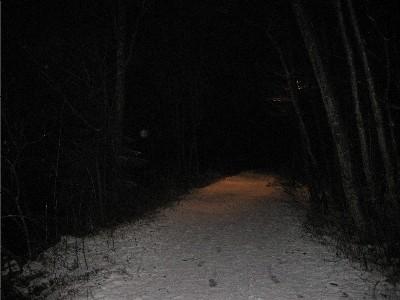 The darkwoods
