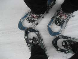 Snowshoeing with the Sista