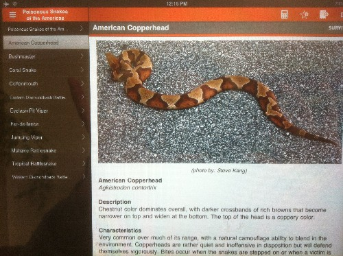 Survival Skills App Copperhead