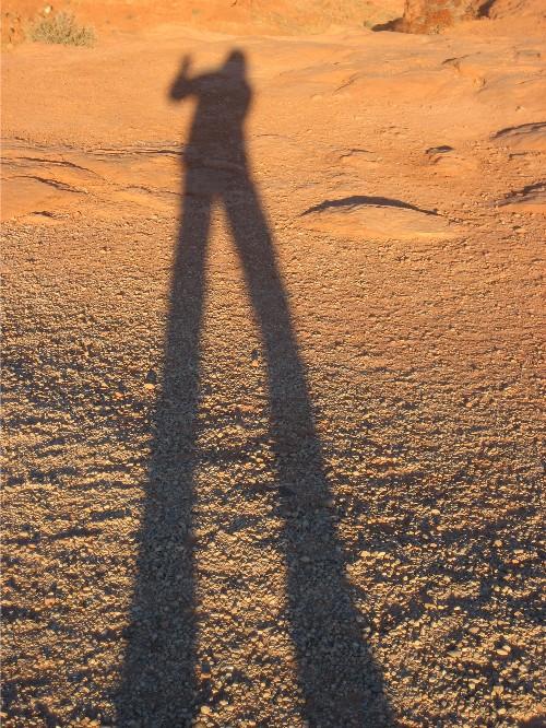 traci macnamara desert shadow