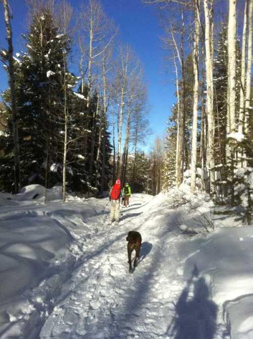 Jan 6 trail